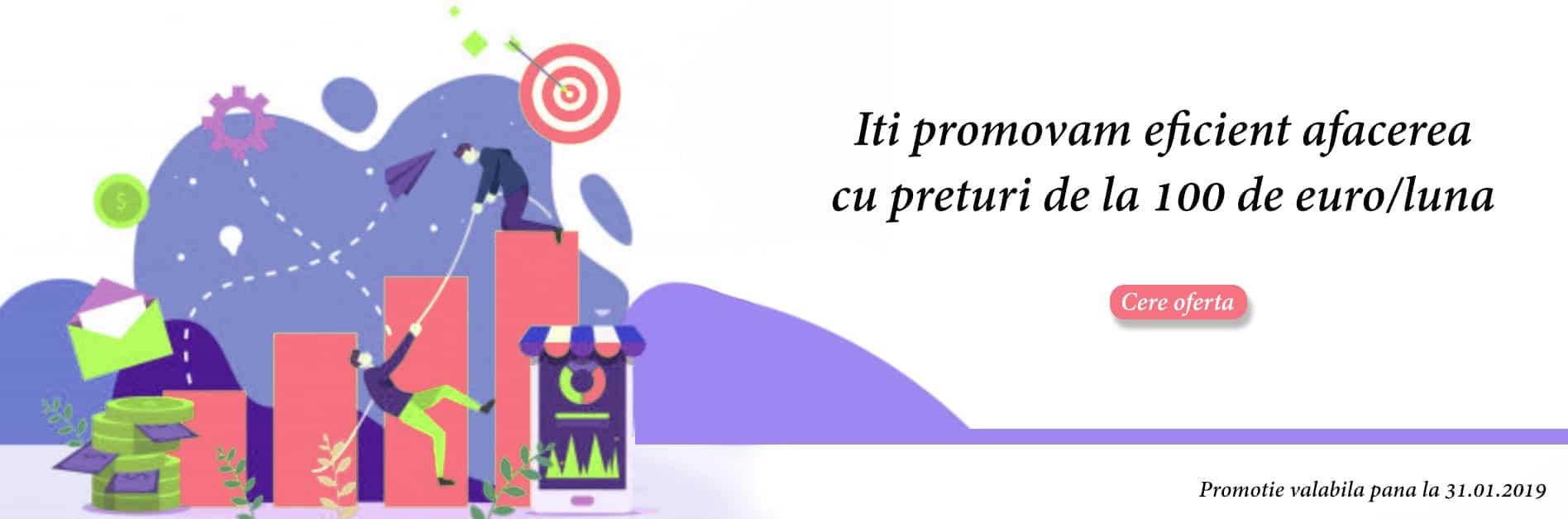 promovarea online